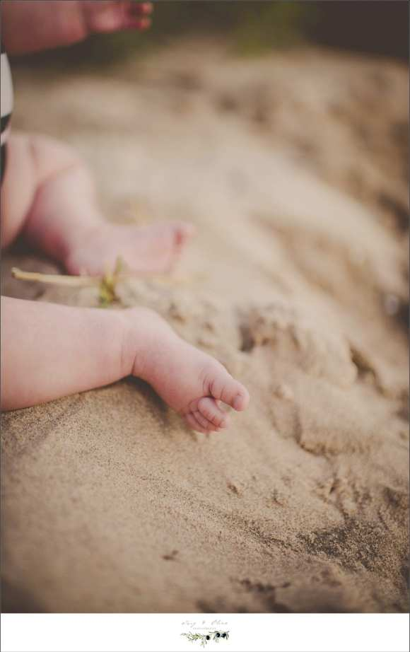 toes in the water, baby butt in the sand, Lake Michigan family sessions