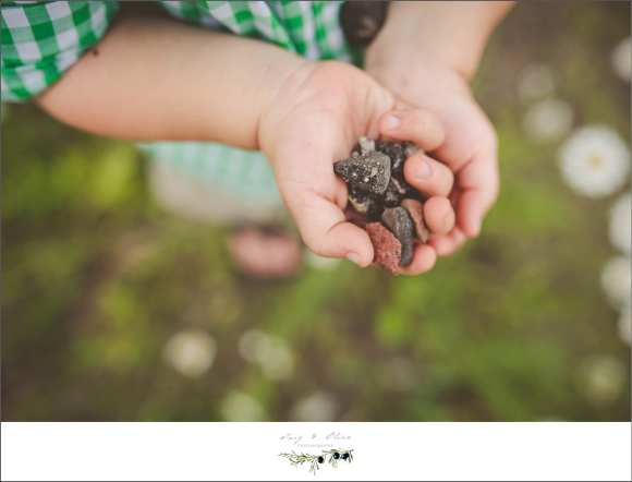 rocks, tiny hands, Stanley family sessions