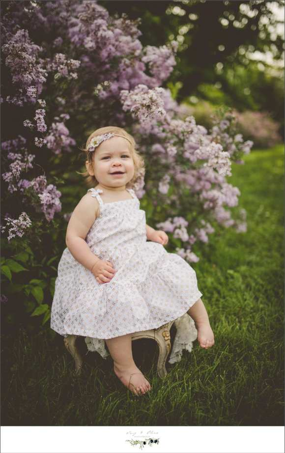 purple flowers, white dress, greenery, little girl, chair, family mini sessions