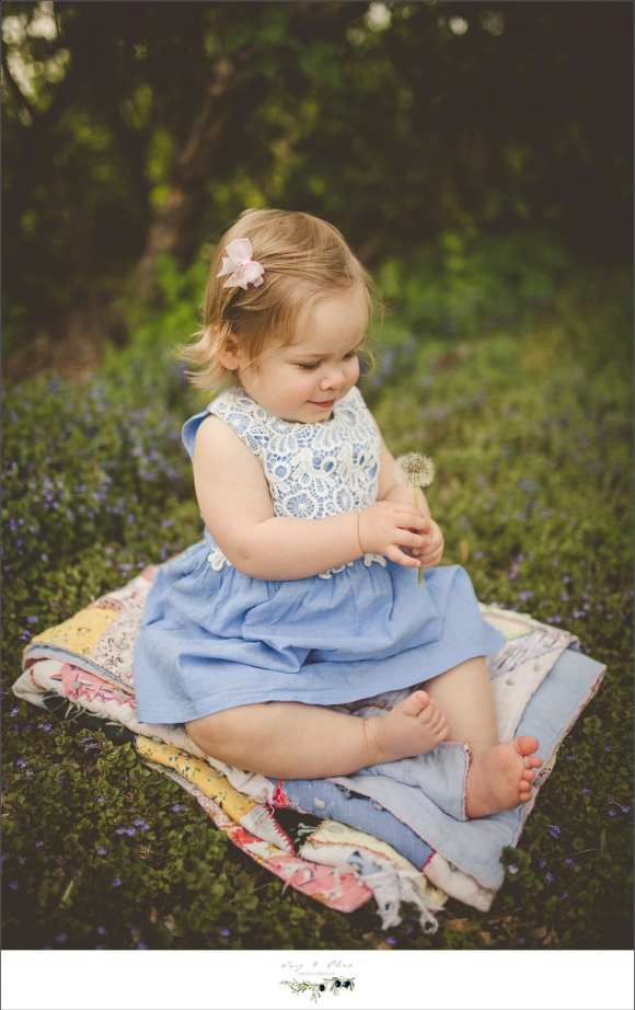 blue dress, blanket, greenery, hair flower, cherub, angel, madison mini sessions