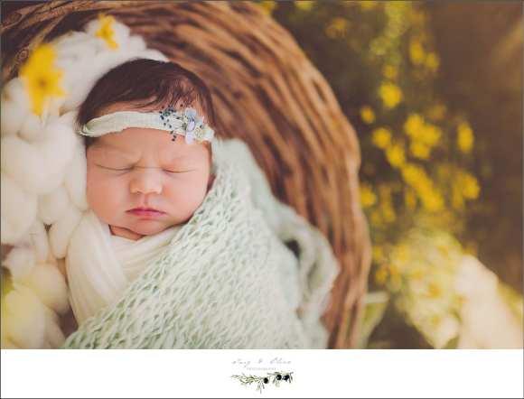 newborn session, swaddled, bundled, hair flower, baskets