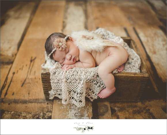 babies, newborns, wraps, hair flower