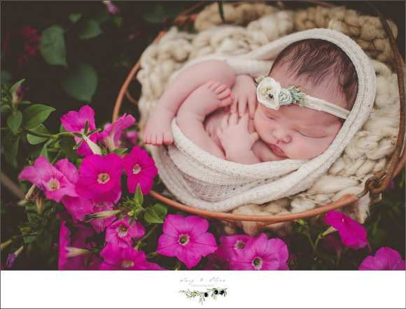 pink flowers, hair flower, swaddled