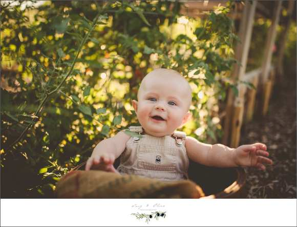 happy baby, outdoor sessions