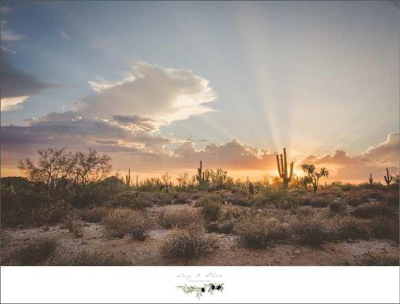 dazzling arizona sky