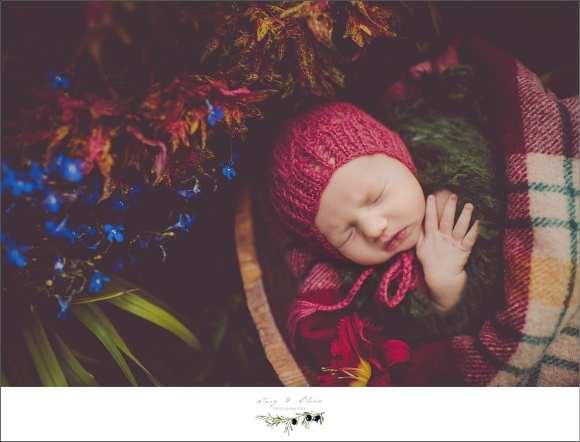 maroon bonnet
