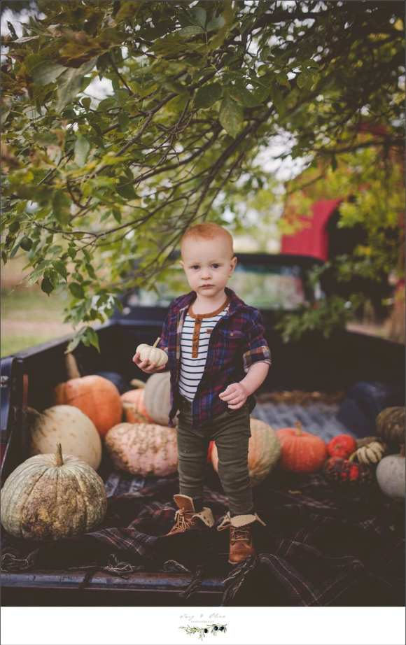 pumpkins and trucks