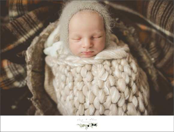 baby egg