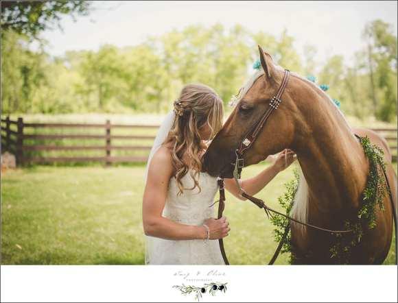 wedding horse portraits