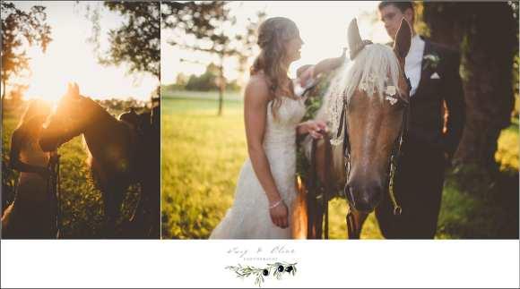 horse wedding party