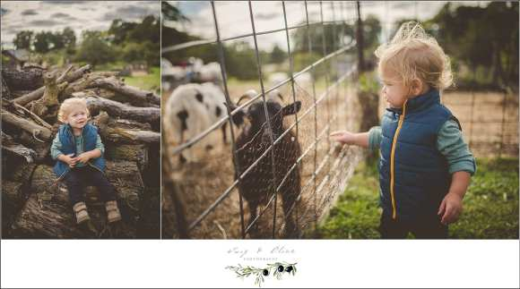 farm family photography session