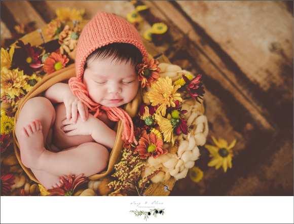 sweet cherub