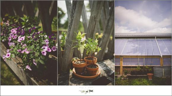 outdoor planters wedding decor