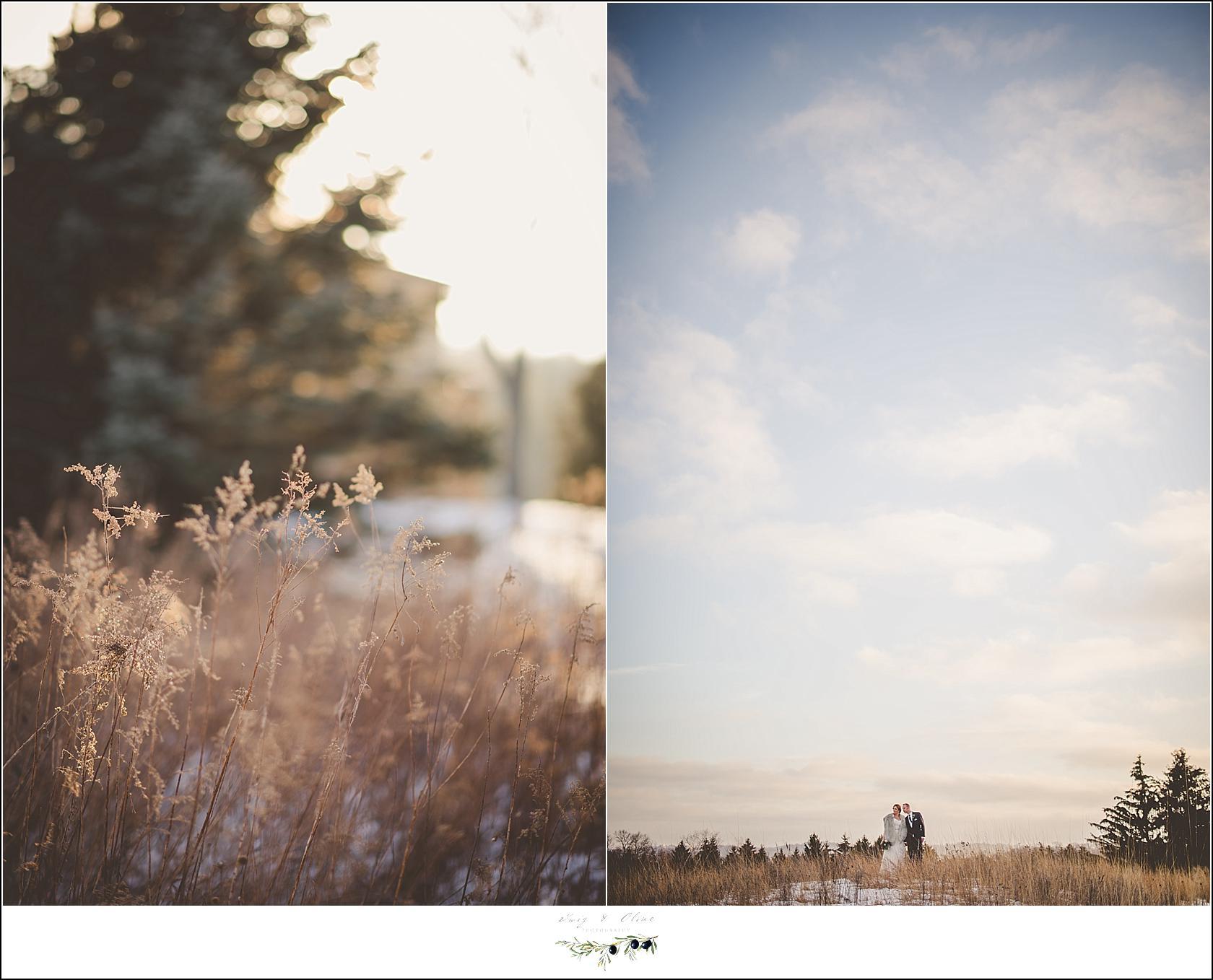 winter wedding wi
