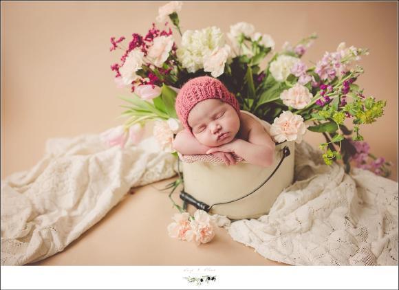 madison wi newborn photographer