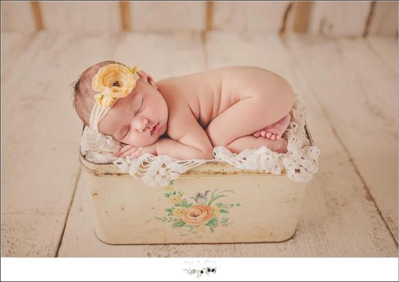 newborn workshops 2016