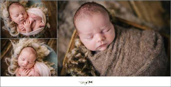 Sun Prairie Newborn Photography Session