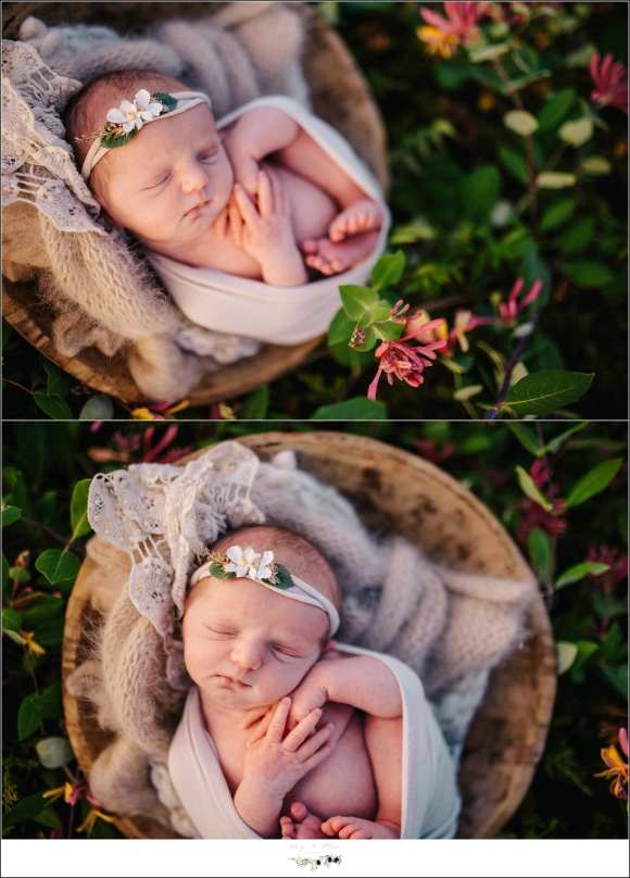 Swaddled Baby Outdoor Photography
