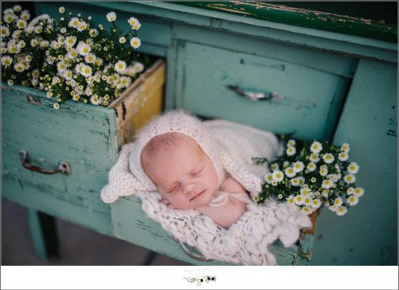 Sun Prairie WI Newborn Outdoor Photography