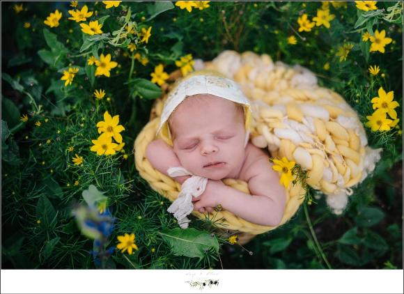 Baby girl in flowers
