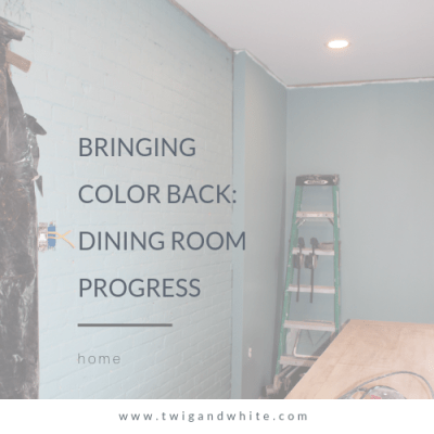 Bringing Color Back – Dining Room Progress
