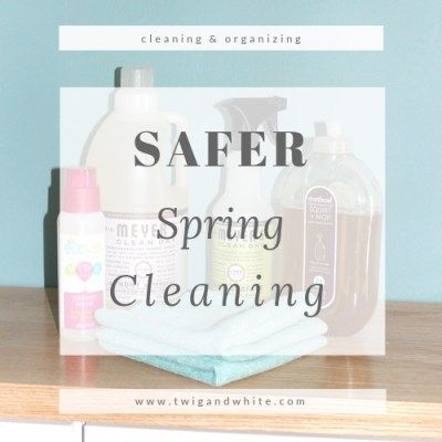 Safer Spring Cleaning for a Safe and Happy Home