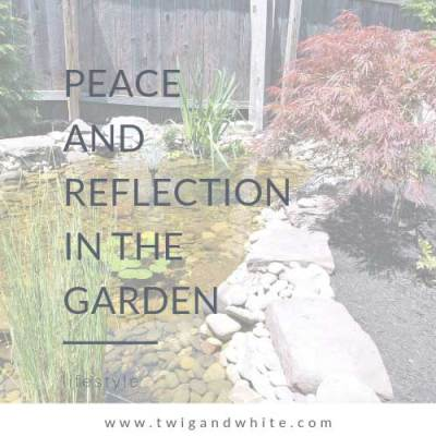 Peace and Reflection in the Garden