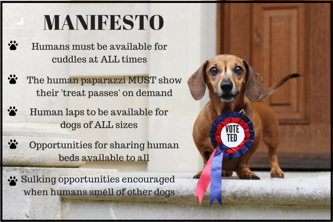 General Election Dog Manifesto by Ted the dachshund