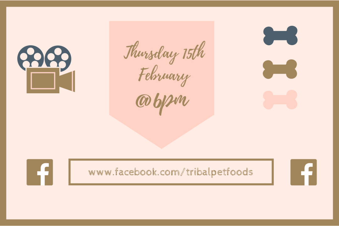 Click to discover more about our Facebook Live interview with Tribal Pet Foods - talking all thing cold pressed dog food!