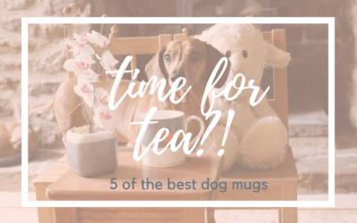 Time for a brew? 5 Dog Mugs pawfect for tea!