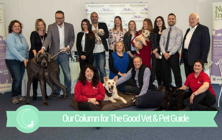 The Good Vet & Pet Guide (Goldie Oldie Competition: Winner's Story)