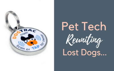 DogTrac: Pet Tech Helping Reunite Lost Dogs