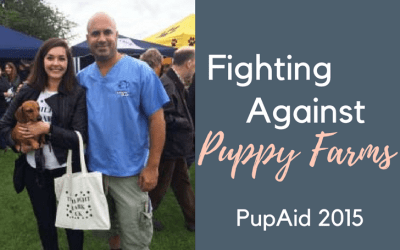 PupAid 2015 – Fighting Against Puppy Farming