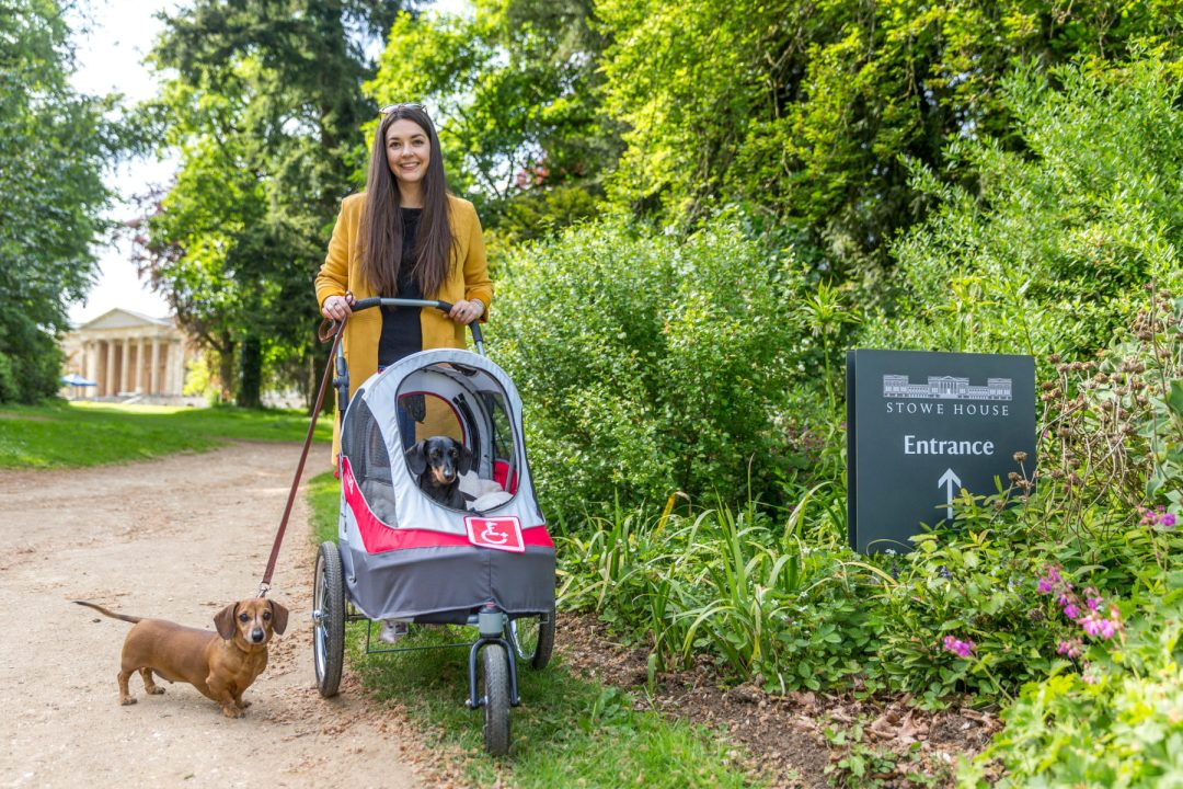 Click to discover why the National Trust dog walks at Stowe make an incredible day out with your dog. Picture shows our two dachshunds & Sarah Baxter from Twilight Bark UK at the entrance to Stowe House