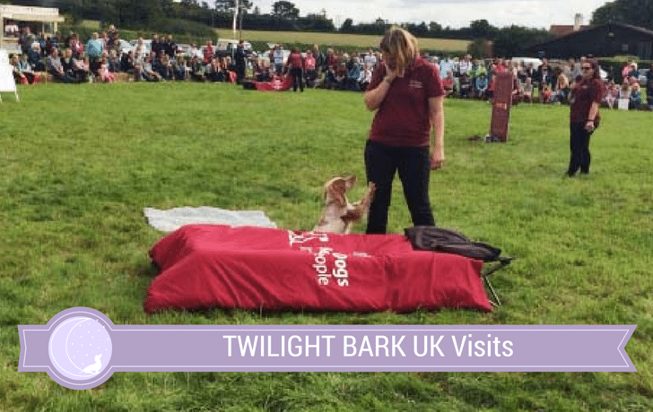 Hearing Dogs for Deaf People – Late Summer Show!