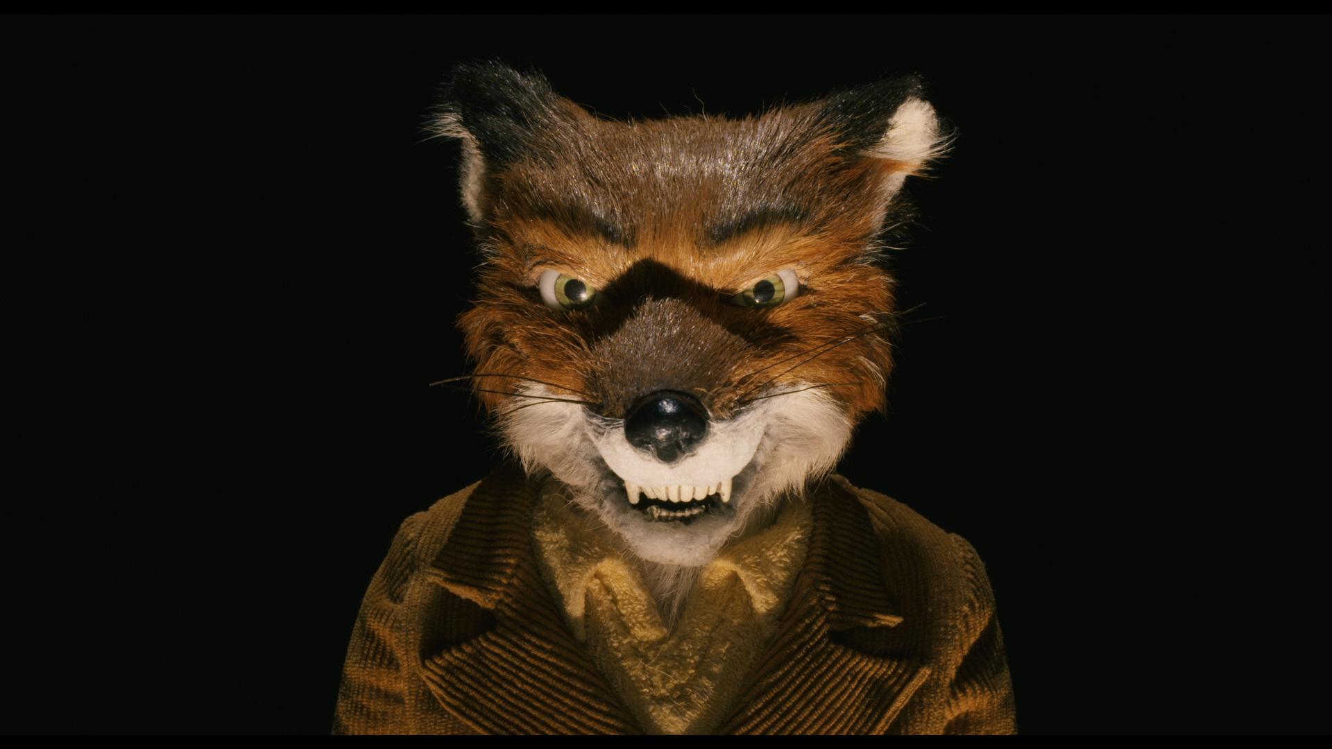 Movie Review Fantastic Mr Fox The Warden S Walk