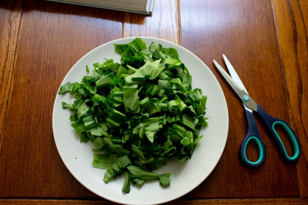 scissors beside some chopped wild garlic leaves