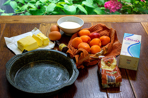 Ingredients for Apricot and Almond Cake