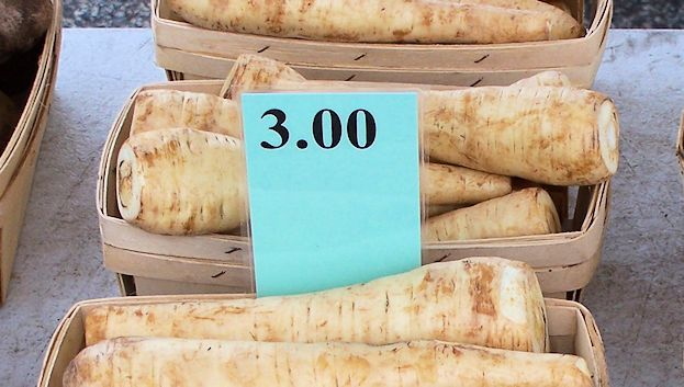 parsnips-at-burnsville-farmers-market