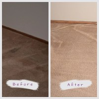 The Best Carpet Cleaning Service In St.Paul & Minneapolis, MN