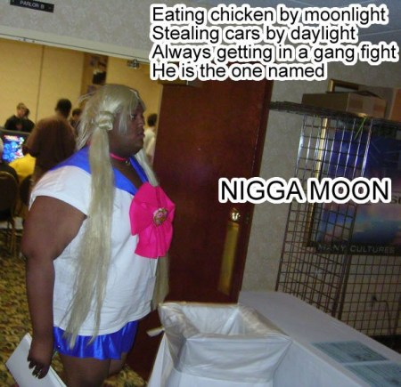 "An Internet meme featuring a black Sailor Moon cosplayer, re-doing the Sailor Moon opening: ""Eating chicken by moonlight / Stealing cars by daylight / Always getting in a gang fight / He is the one named N---A MOON"""