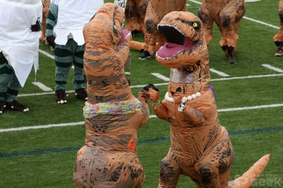 T-rexes battle for dominance.