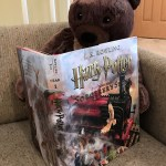 Teddy bear reading Harry Potter and the Sorcerer's Stone