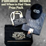 Fantastic Beasts prize pack featuring tote bag, pencil pouch, T-shirt, hat, iPhone skin, and wand