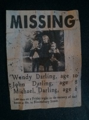 A missing poster for the Darlin children