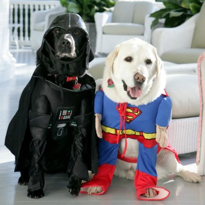 Two dogs dressed as Darth Vader and Superman, respectively
