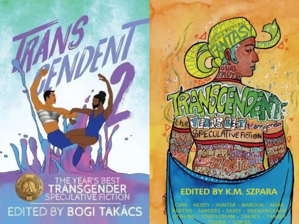 Transcendent covers