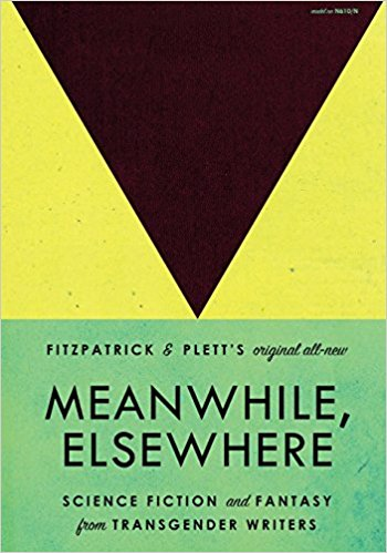 Meanwhile, Elsewhere book cover