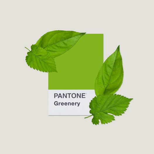 Greenery pantone color of the year 2017 makeup for Pantone 2017 greenery