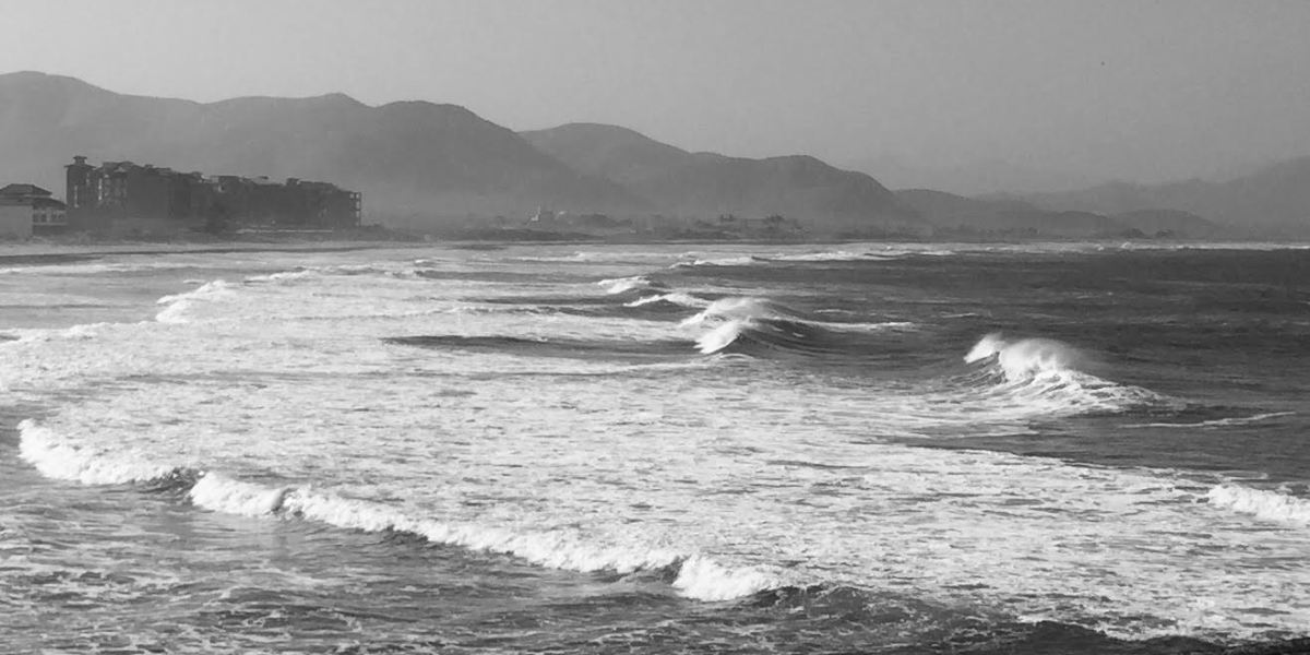 Surf and Coffee: Baja Sur Mexico – Part II